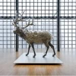 Tokyo Visualist - Kohei Nawa
