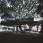 Ring Around a Tree by Tezuka Architects (7)