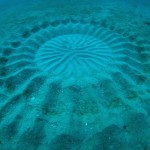 underwater mystery circle 2