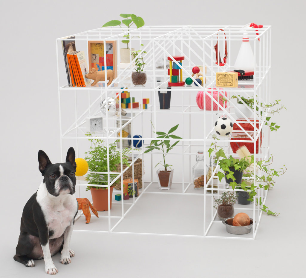 Kenya hara architecture for dogs spoon tamago for Architecture and design dog house