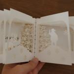 yusuke oono 360 book christmas (6)