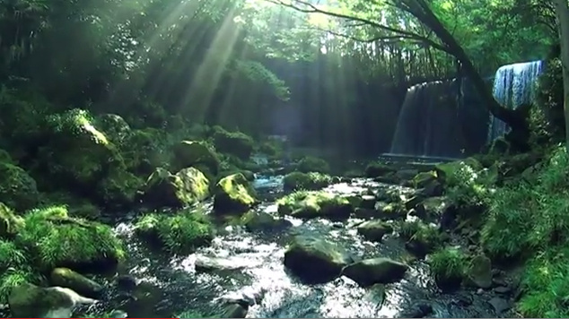 water rock (2)