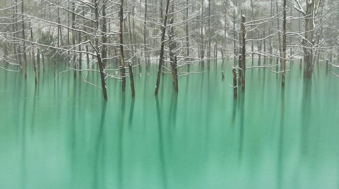blue pond hokkaido (2)