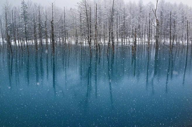 blue pond hokkaido (5)