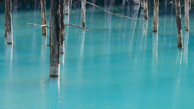 blue pond hokkaido (6)