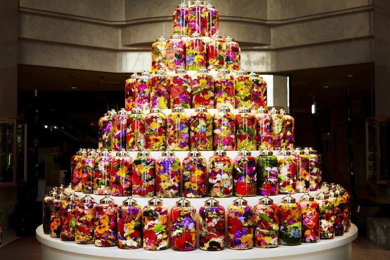 A Colorful Birthday Cake Of Bottled Flowers By Makoto Azuma