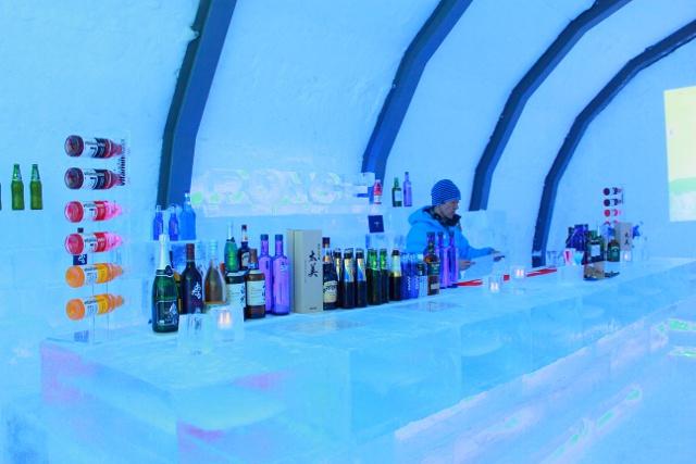 ice hills hotel (8)