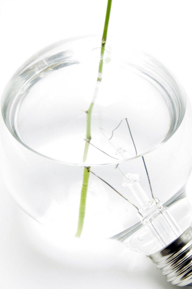light-bulb-vase (2)