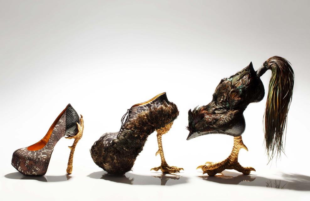 Bird-Witched   Cock-inspired Stilettos