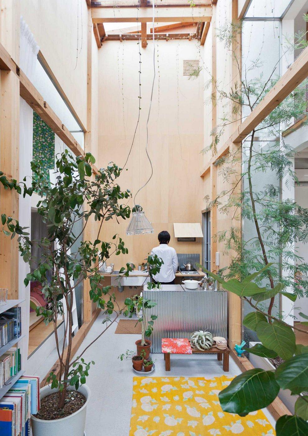 House-Komazawa-Park-Mico (10)