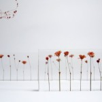 f,l,o,w,e,r,s flower ruler by norihiko terayama