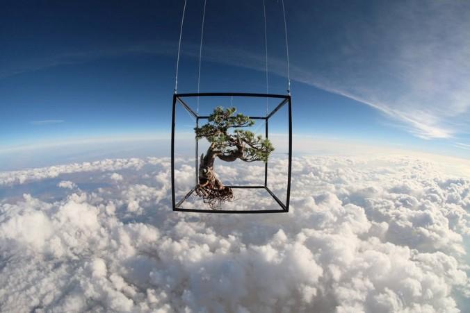 makoto-azuma-EXOBIOTANICA -BOTANICAL SPACE FLIGHT (1)