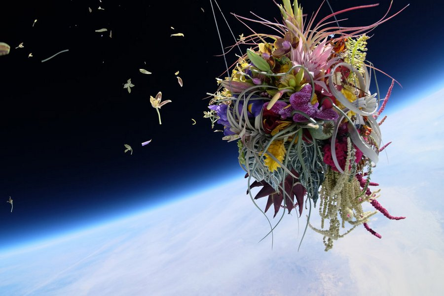 makoto-azuma-EXOBIOTANICA -BOTANICAL SPACE FLIGHT (3)
