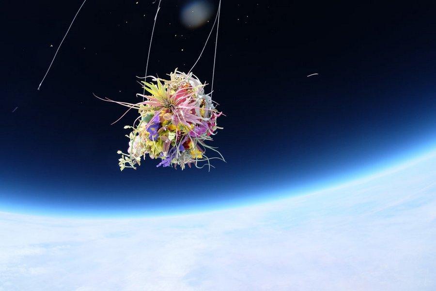 makoto-azuma-EXOBIOTANICA -BOTANICAL SPACE FLIGHT (5)