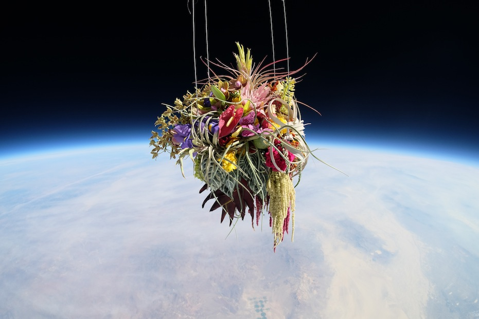 makoto-azuma-EXOBIOTANICA -BOTANICAL SPACE FLIGHT (6)