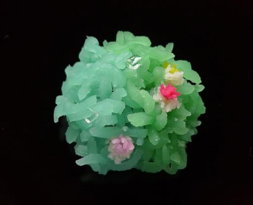 Hajime Nakamura wagashi sweets and flowers