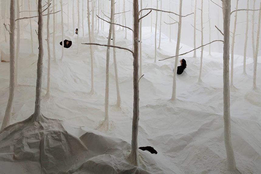 Wald aus Wald by takashi kuribayashi (2)