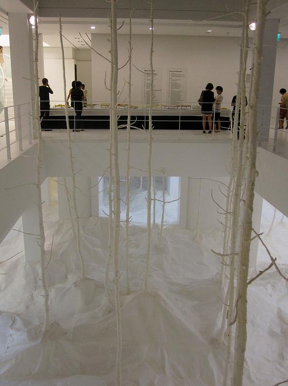 Wald aus Wald by takashi kuribayashi (5)