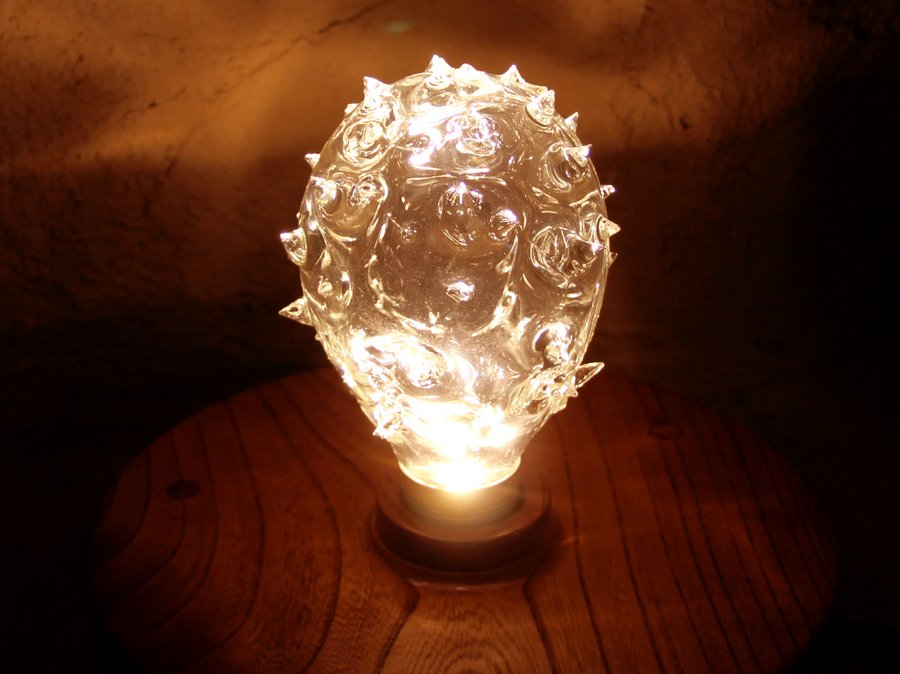 only 1 LED light bulbs dragon fruit