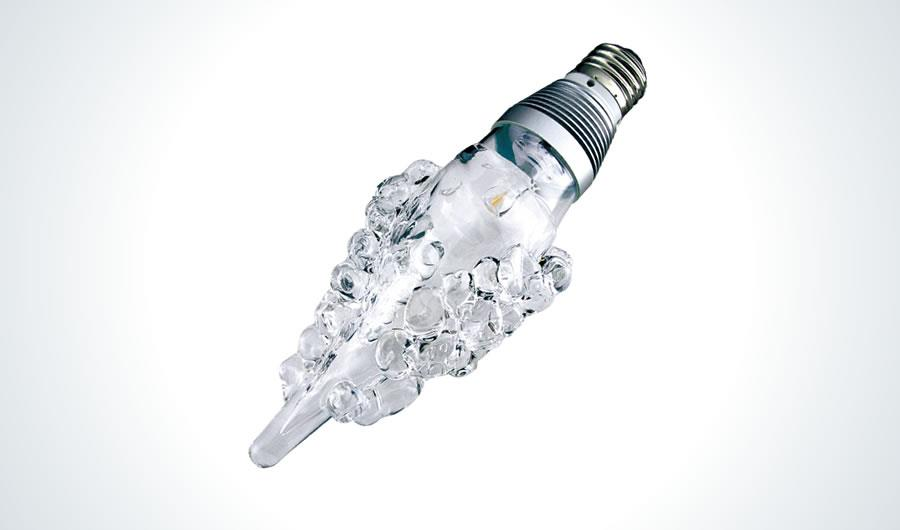 only 1 LED light bulbs grape