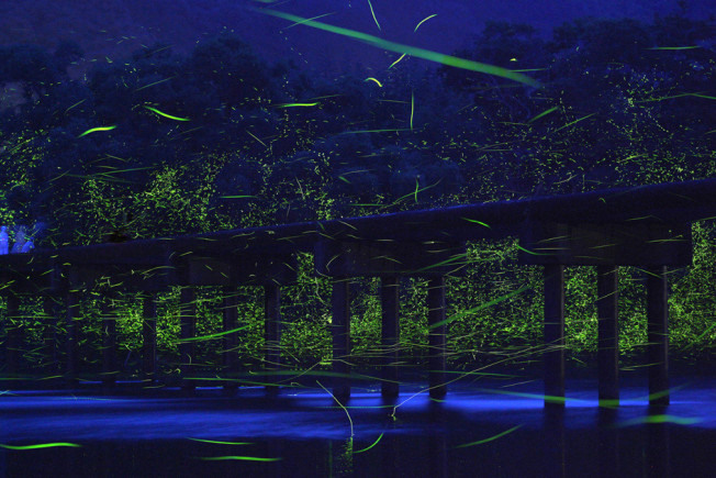 Japan's Natural Light Shows Photographed by Takehito Miyatake