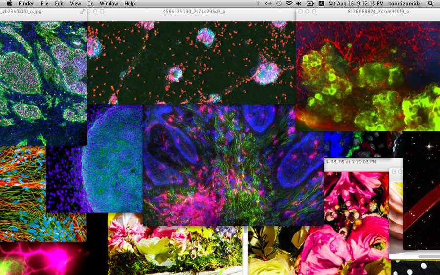 toru izumida screenshot art