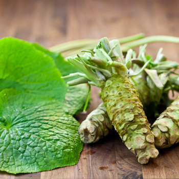 Wasabi: the hardest plant to grow in the world
