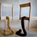 shippo tail chair