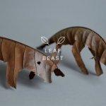 baku maeda leaf beasts