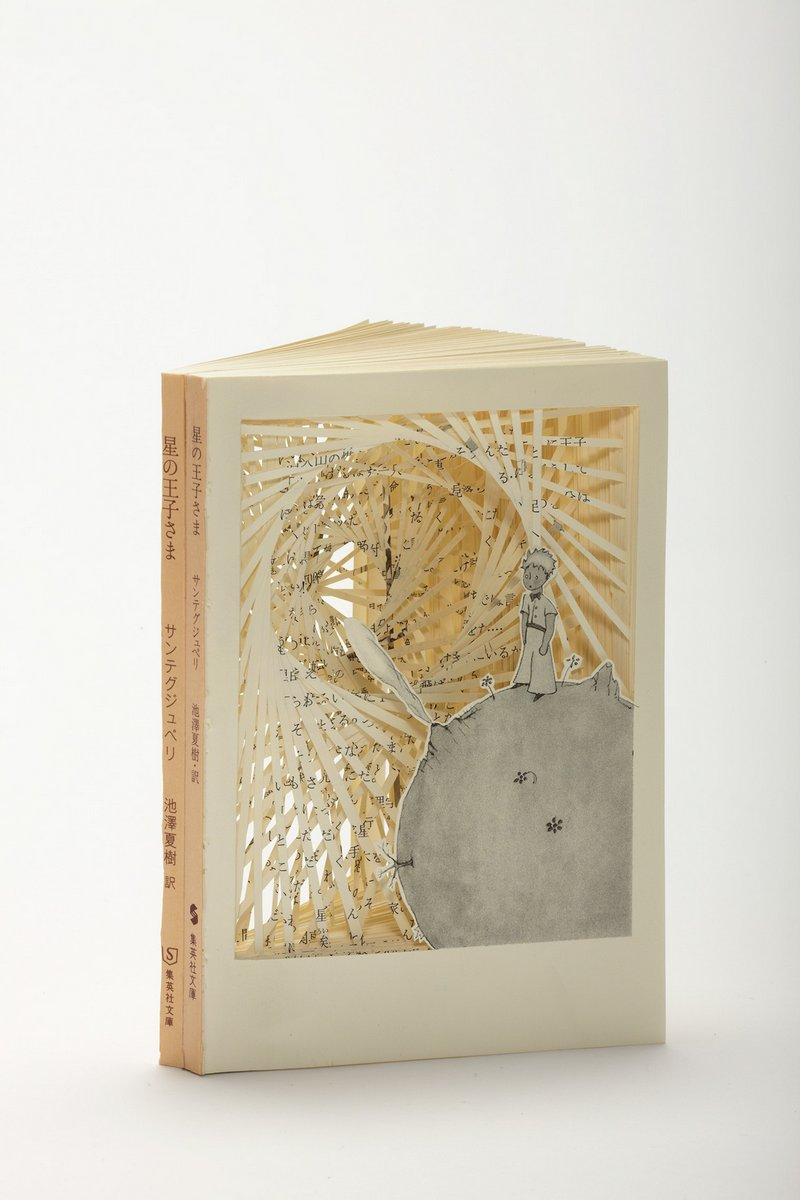 tomoko takeda cut and folded books