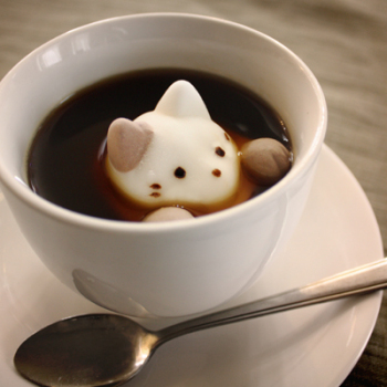 Marshmallows That Look Like Cats in Hot Chocolate