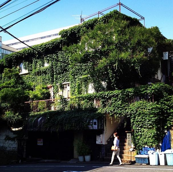 Fm gallery in Ebisu Tokyo