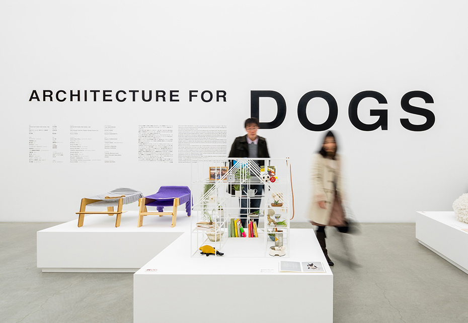 architecture for dogs exhibition