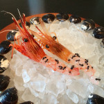 noma japan shrimp with ants