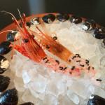 noma japan shrimp with ants