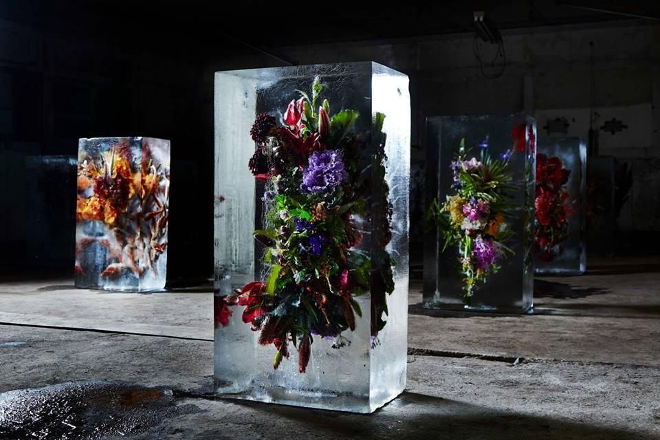 iced flowers by makoto azuma