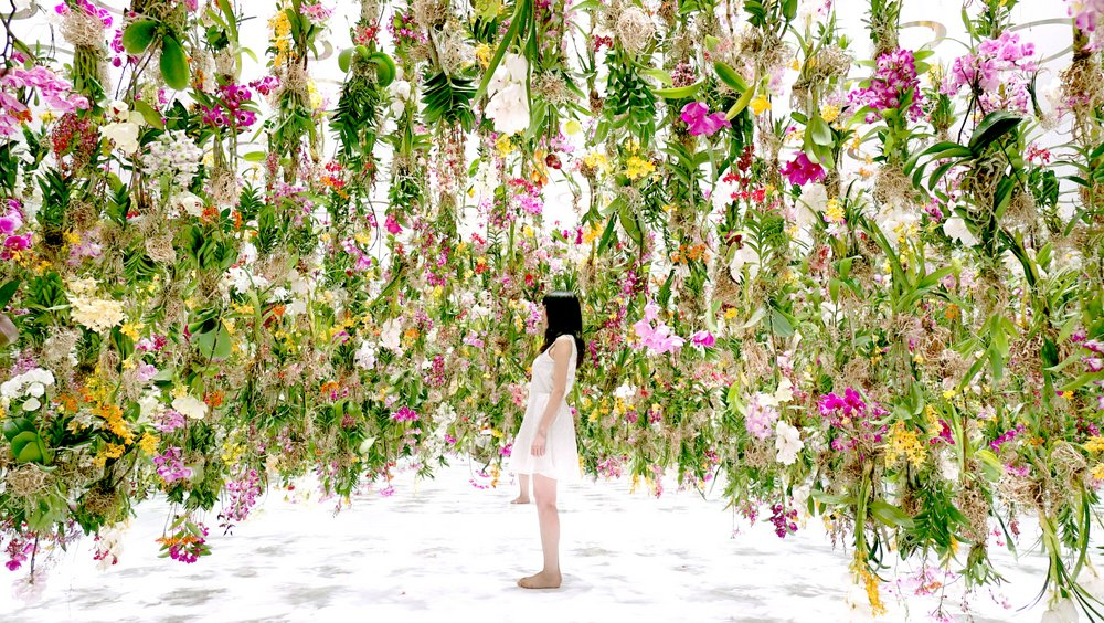 floating flower garden by teamlab at miraikan