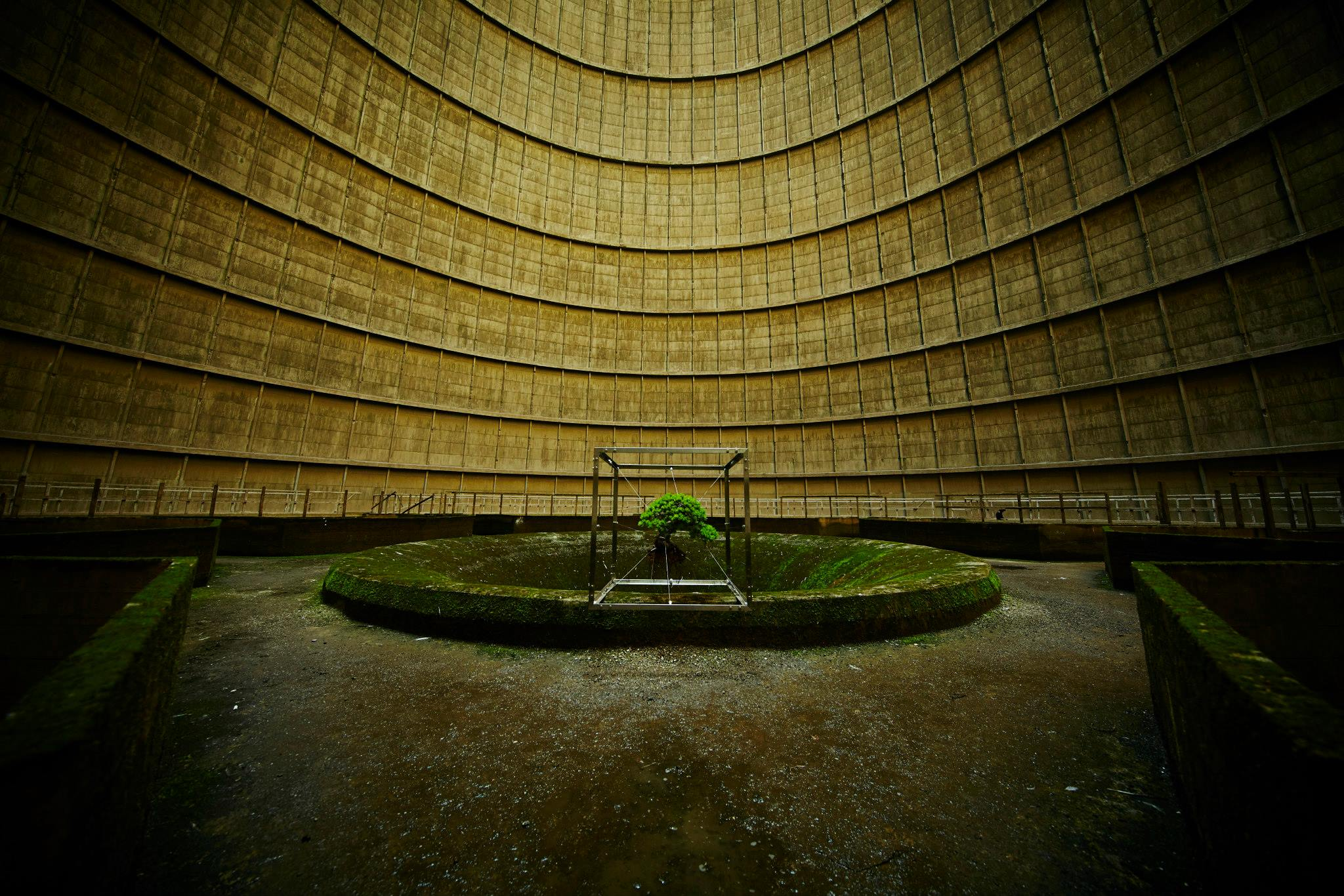 shiki bonsai power station belgium by makoto azuma