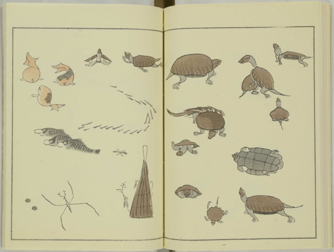 kitao-masayoshi-illustrated-animals (10)