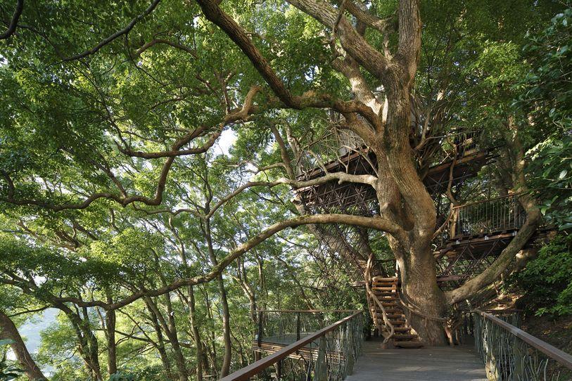 risonare atami treehouse by hiroshi nakamura