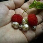 shinji nakaba skull pearls