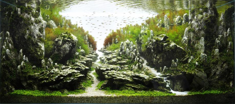 TAU Tokyo Aquascape Union