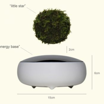 The Surreal Levitating Air Bonsai Are Now Available