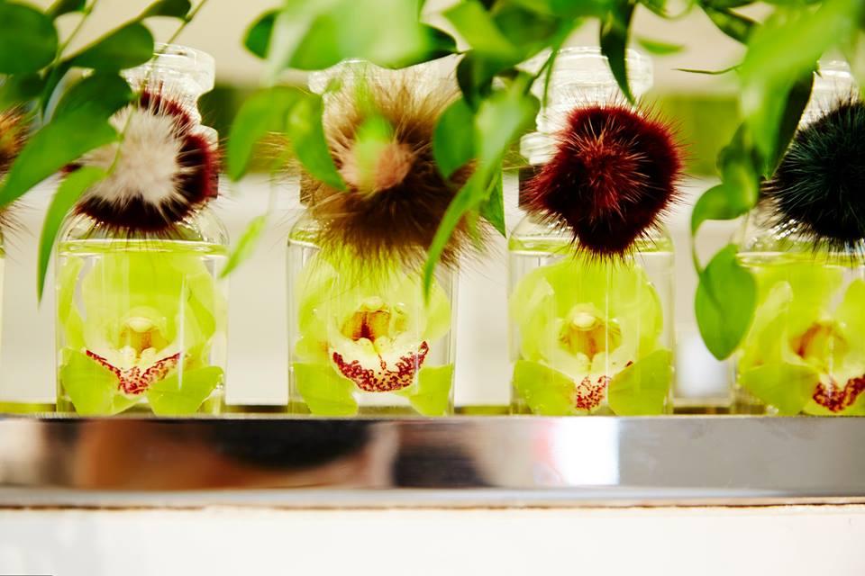FENDI FLOWER SHOP by Makoto Azuma 5