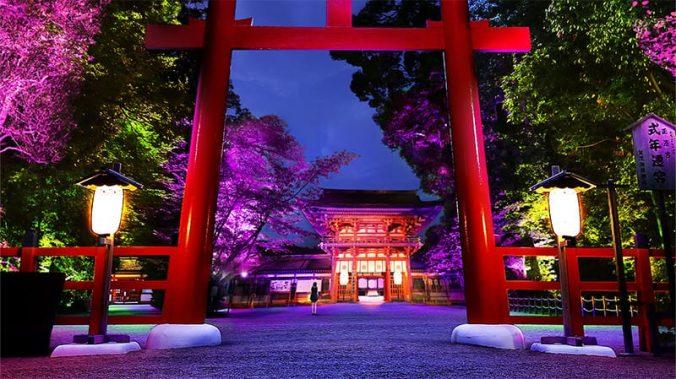 Shimogamo Shrine Light Festival (1)