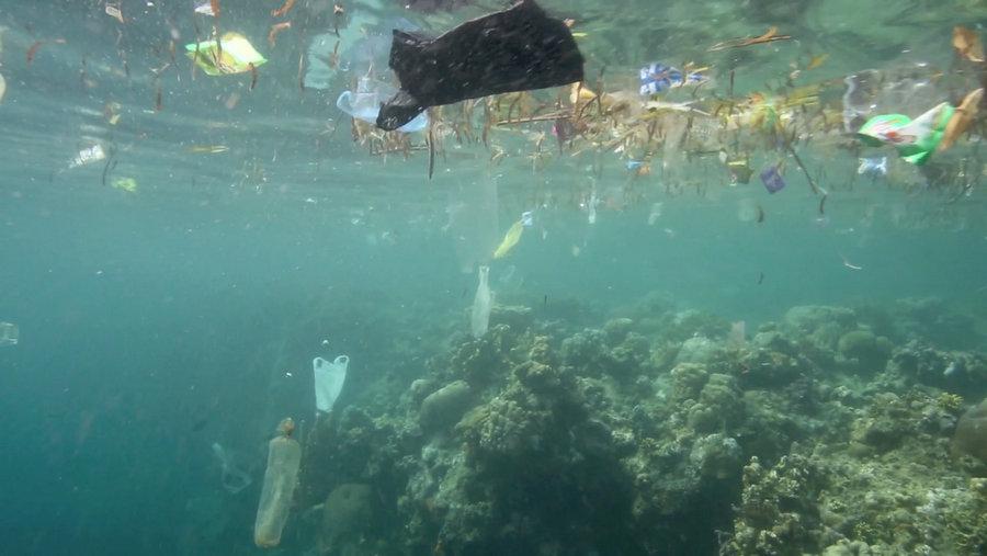 umi hashi PlasticVervuiling