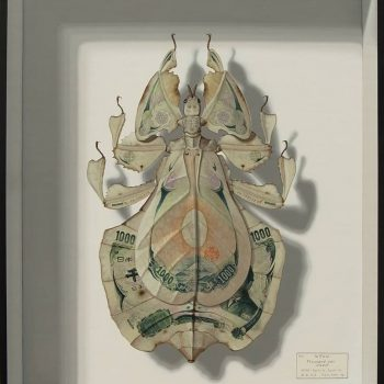 Imaginary Camouflaged Leaf Insects Painted by Takumi Kama