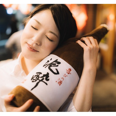 sake-bottle-pillow-2