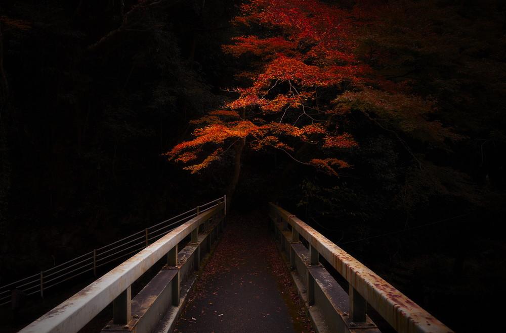 yasuhiro-ogawa-lost-in-kyoto-1