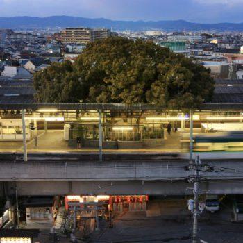 Kayashima: The Japanese Train Station Built Around a 700 Year Old Tree